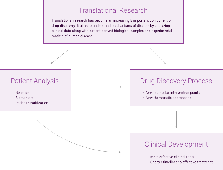 Tranlational Research Flow Chart