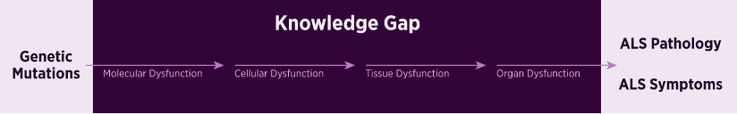 Translational Research Knowledge Gap
